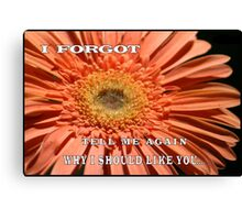 "MESSAGE: ""I forgot.  Tell me again why I should like you..."" Canvas Print"