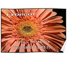 "MESSAGE: ""I forgot.  Tell me again why I should like you..."" Poster"