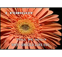 "MESSAGE: ""I forgot.  Tell me again why I should like you..."" Photographic Print"