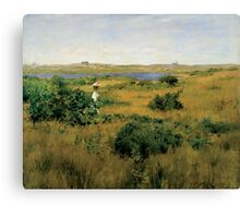 William Merritt Chase - Summer At Shinnecock Hills. Country landscape: Summer , country, travel, garden, rustic, relaxation, rest, game, trees, sun, flowers Canvas Print
