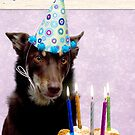 Happy Bithday from Ally by Louise Docker