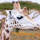 Dreaming Of The Savanna by JohnYoung