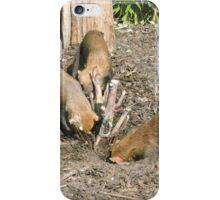 Dig lads, dig! iPhone Case/Skin