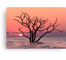 The Sunrise Canvas Print