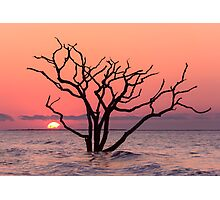 The Sunrise Photographic Print