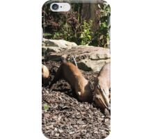 It's down here somewhere.... iPhone Case/Skin