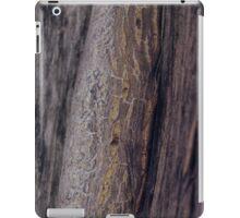 Nature's paths iPad Case/Skin