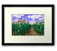 Clouds and Corn Framed Print