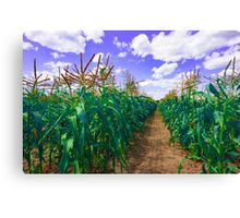 Clouds and Corn Canvas Print