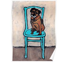 Fergus On A Blue Chair Poster