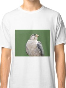 Hybrid  Classic T-Shirt