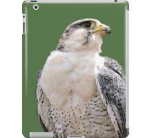Hybrid  iPad Case/Skin