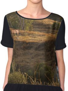 Who let the horse out? Chiffon Top