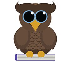 Owl Sitting on a Book Photographic Print