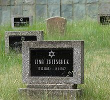 Jewish Cemetery I. - fort Terezín (National Suffering Memorial)  by Natas