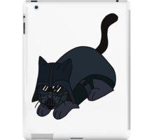 Darth Va-PUR iPad Case/Skin