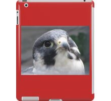 Peregrine Falcon iPad Case/Skin