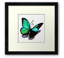 Fading Turquoise Butterfly Framed Print