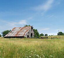 Rural Arkansas by joelmcafee