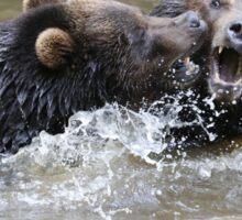 Grizzlis fighting Sticker