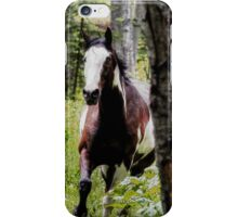 Running Paint Horse through the forest. iPhone Case/Skin