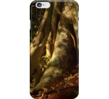 Strangler Fig iPhone Case/Skin