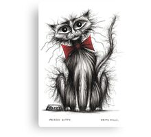 Frizzy kitty Canvas Print