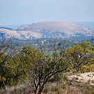 A View of Enchanted Rock by Cathy Jones