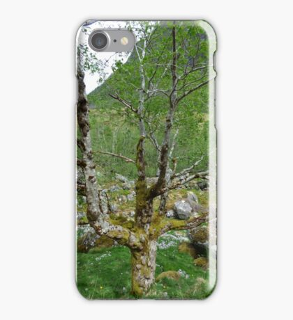 Dead tree covered with moss iPhone Case/Skin