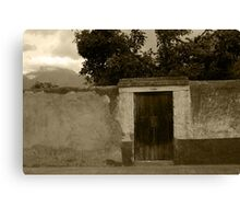 Brown Door in a White and Green Wall Canvas Print