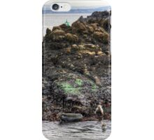 Grey seals on Inchcolm iPhone Case/Skin
