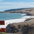South Coast of South Australia by DPalmer