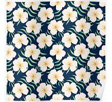 Plumeria design. Elegant floral print Poster