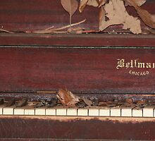 Piano by wingsonafield