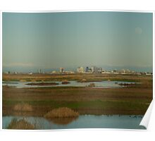 Sacramento from the Yolo Bypass Wildlife Area Poster