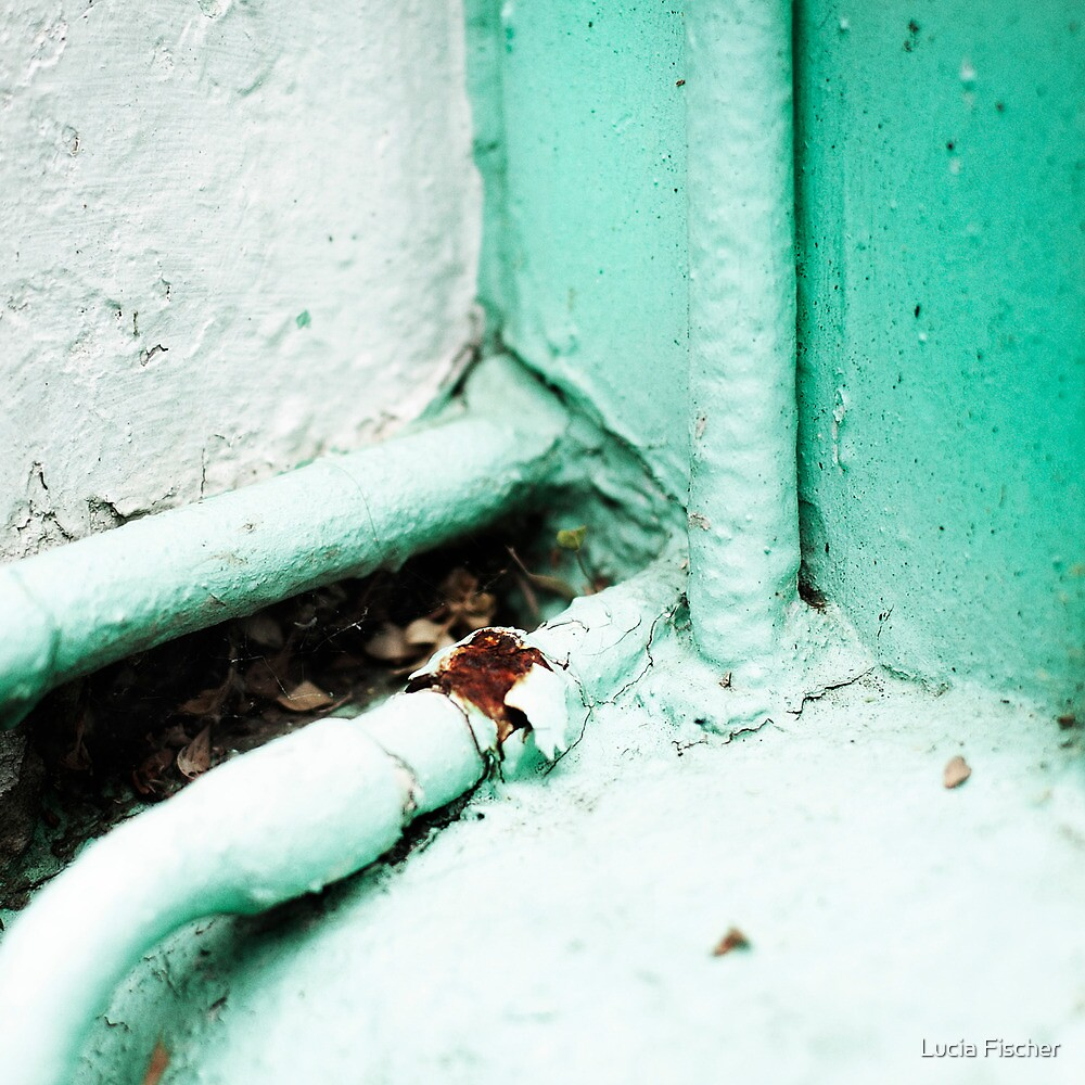 { Corners: where the walls meet #04 } by Lucia Fischer