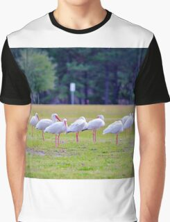 Ibises On The Ball Field Graphic T-Shirt