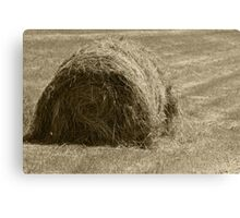 Hay Bale in a Field Canvas Print