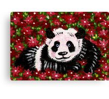 Panda Resting in Red Canvas Print