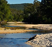 The Meandering River by Terry Everson