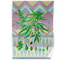 Vintage Cannabis Poster