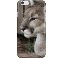 Cougar Brothers II iPhone Case/Skin