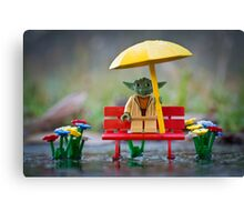 Wet, Yoda Is. Canvas Print