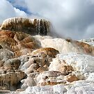 Mammoth Hot Springs  by Tori Snow