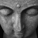 buddha in stone. prahran market, melbourne by tim buckley   bodhiimages