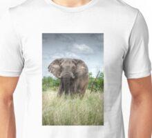 Elephant Bull Unisex T-Shirt