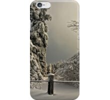 Heavy Laden iPhone Case/Skin