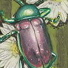 Beetle by Troglodyte