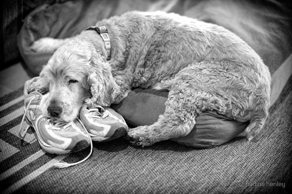 """they can't go anywhere without me if I'm sleeping on her sneakers...zzzz"" by nadine henley"