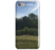 Nature Walk iPhone Case/Skin